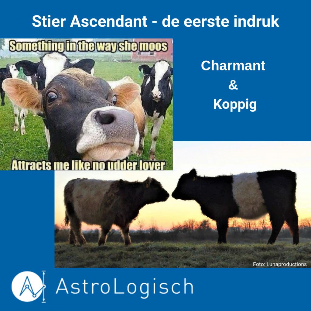 AstroLogisch Ascendant Stier