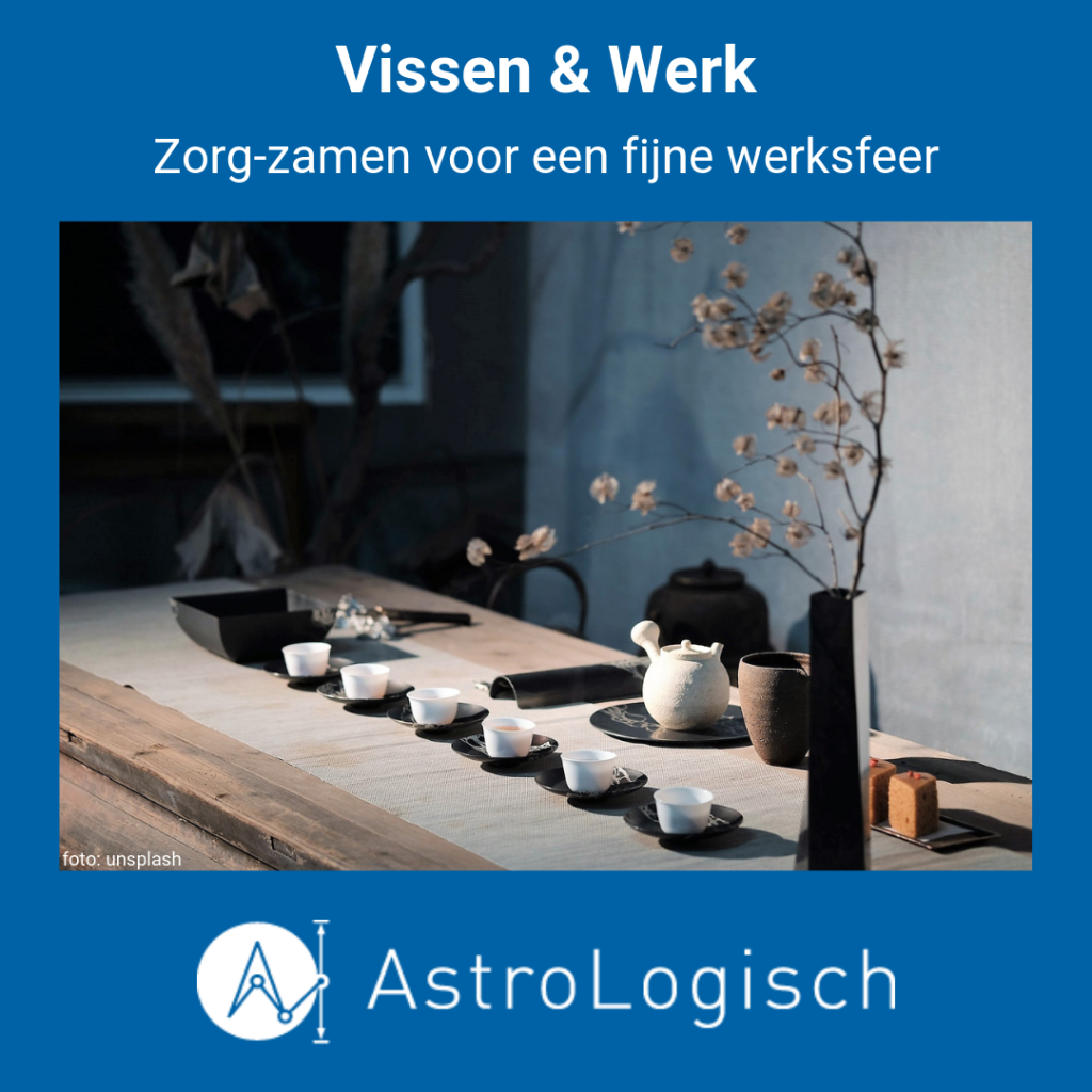 AstroLogisch Vissen & Werk, zorgzaam, fijne werkplek