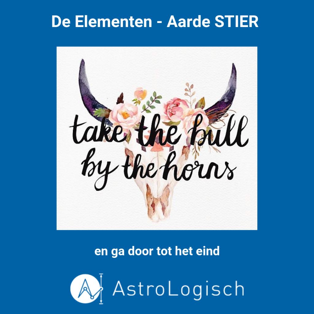AstroLogisch De Elementen - Aarde Stier, doorgaan tot het eind, Taurus, take the bull by the horns