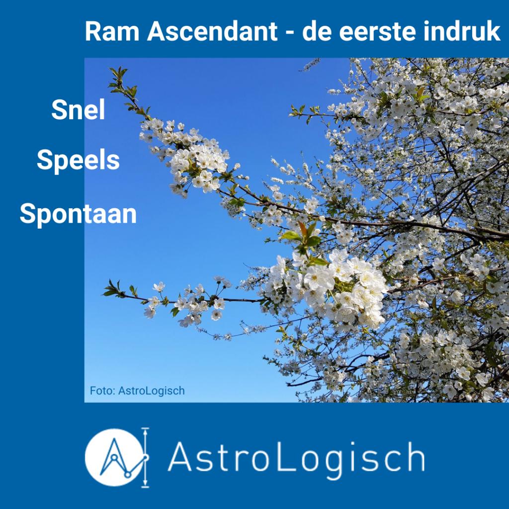 AstroLogisch Ascendant Ram - de eerste indruk
